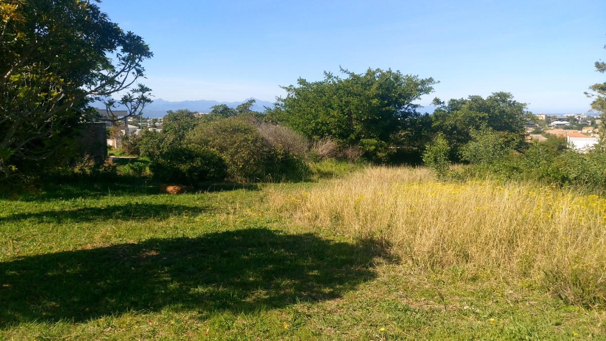 Whale Rock, 6600, ,Land,For Sale,1073